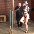 Bella's introduction into pony play. This hot and sexy girl sure makes one mighty fine specimen! Pretty, pretty pony…